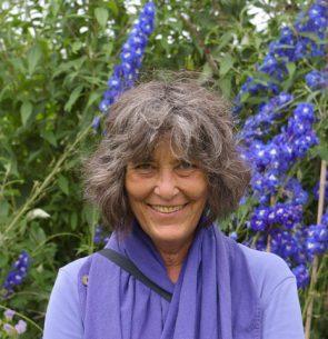 Nancy Dubrule-Clemente